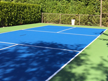 Home Pickleball Courts