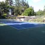 Tennis Court Gallery 12